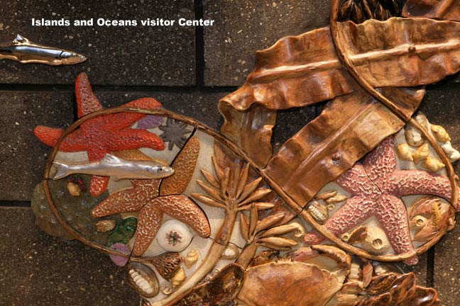 Image of intertidal art on the wall, in the Islands and Ocean Center lobby.